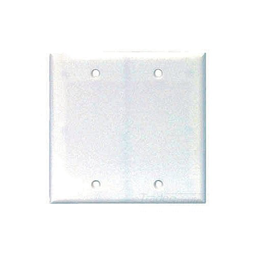 Blank 2-Gang Electrical Plate - White