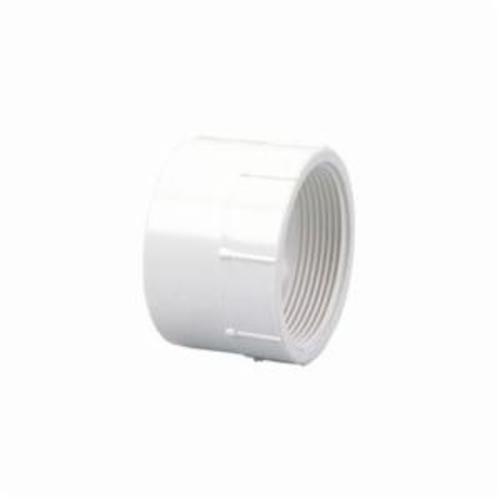 "4"" PVC x FIP Adapter (P101-040)"